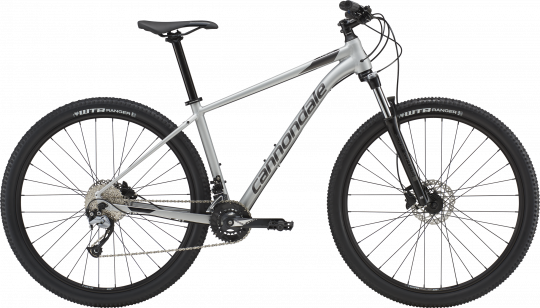 Cannondale Trail 6 2019 | Silver